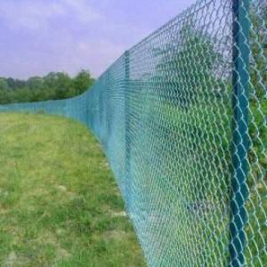 Забором ограждено пастбище скота