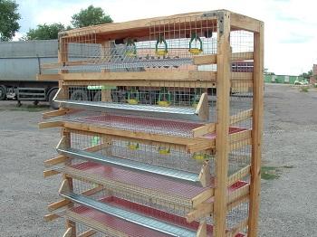 Конструкция клетки из сварной сетки с деревянным каркасом.